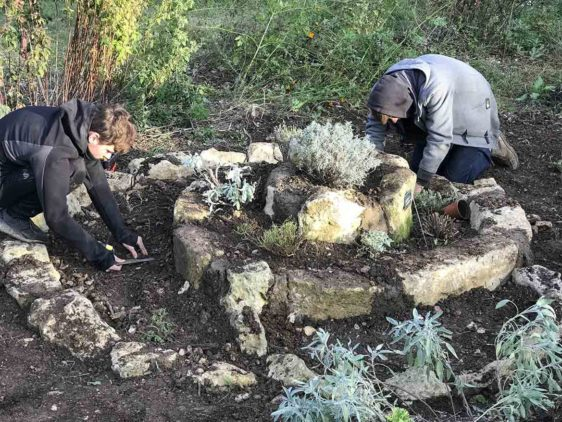 Building the herbal spiral